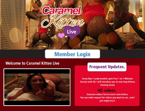 Caramel Kitten Live Username Password