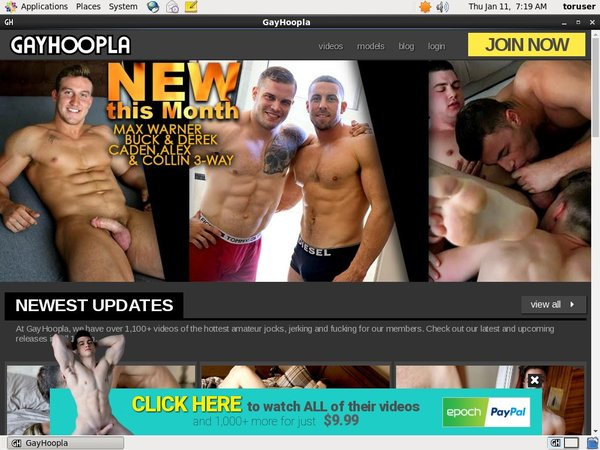 Discount Gay Hoopla Promo Code
