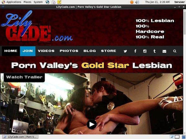 Lilycade Porn Stars